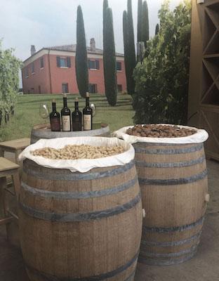 Festa del vino Podere Palazzo