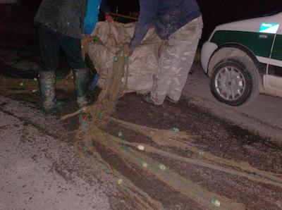 Intervento della Polizia provinciale e della Polizia municipale Alto Ferrarese in territorio di Bondeno
