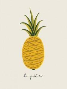 Orto degli Ananassi