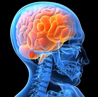 a Parma master in Psicologia Clinica e Counseling centrato sulla persona