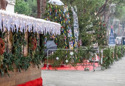 Inaugurato ieri il Giardino artistico degli Alberi di Natale a MiMa On Ice