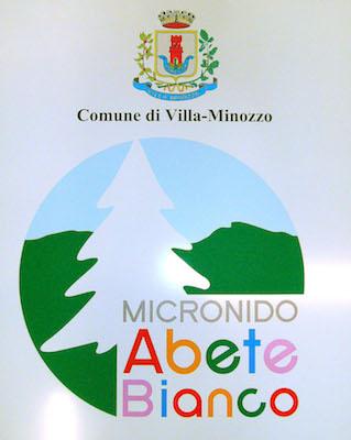 Micronido Abete Bianco