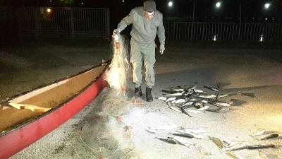polizia provinciale contro pesca di frondo a Comacchio