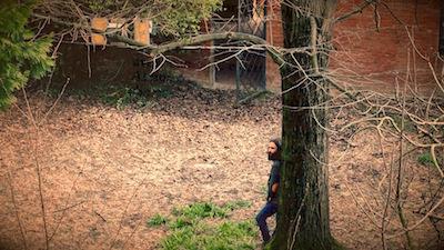 Il cortile di Casa Ariosto