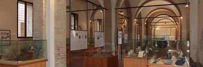 Museo Archeologico di Cesena