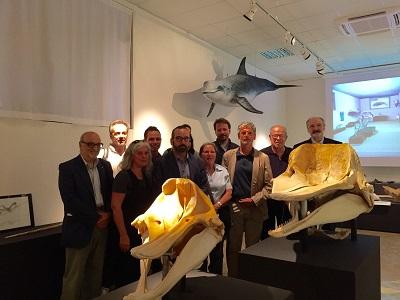 mostra cetacei Ferrara