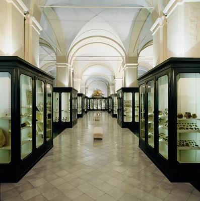 salone_archeologico