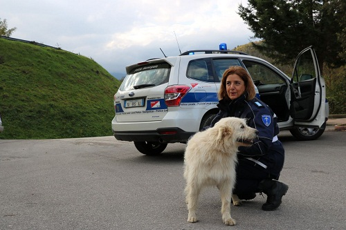 polizia-municipale-1