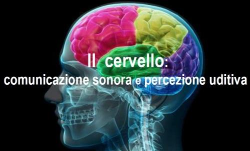brain2017