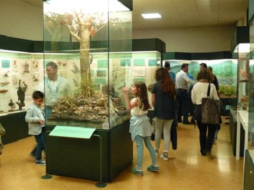 museo-di-storia-naturale-ferrara-visite