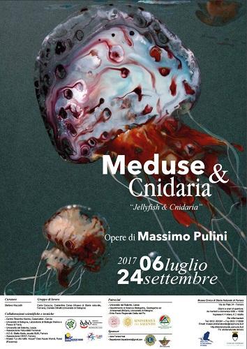 Meduse & cnidaria locandina