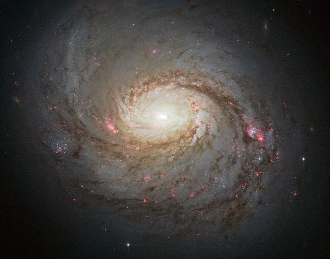 mese della scienza 2017 galassia a spirale