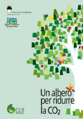 un albero per ridurre la CO2