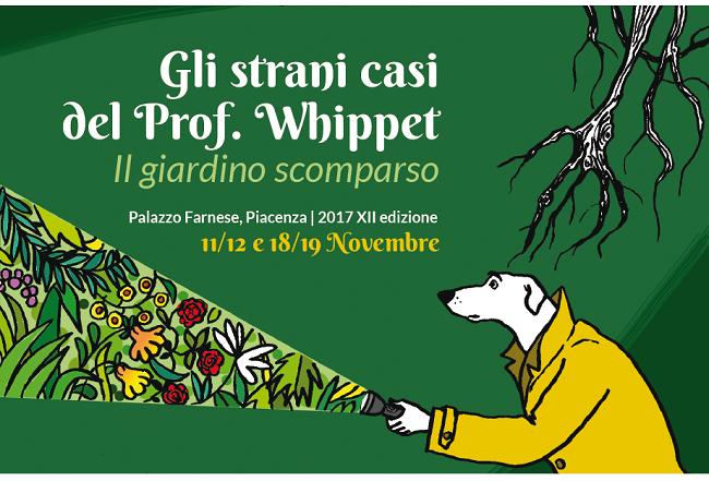 whippet_2017-01