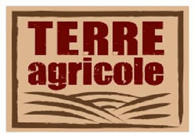 Logo Terre Agricole
