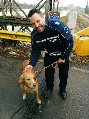 piena secchia-cane ritrovato-12dic