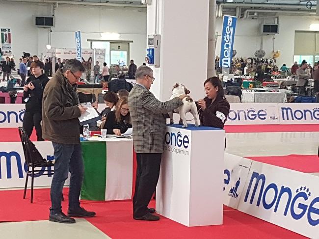Romagna Winner 2