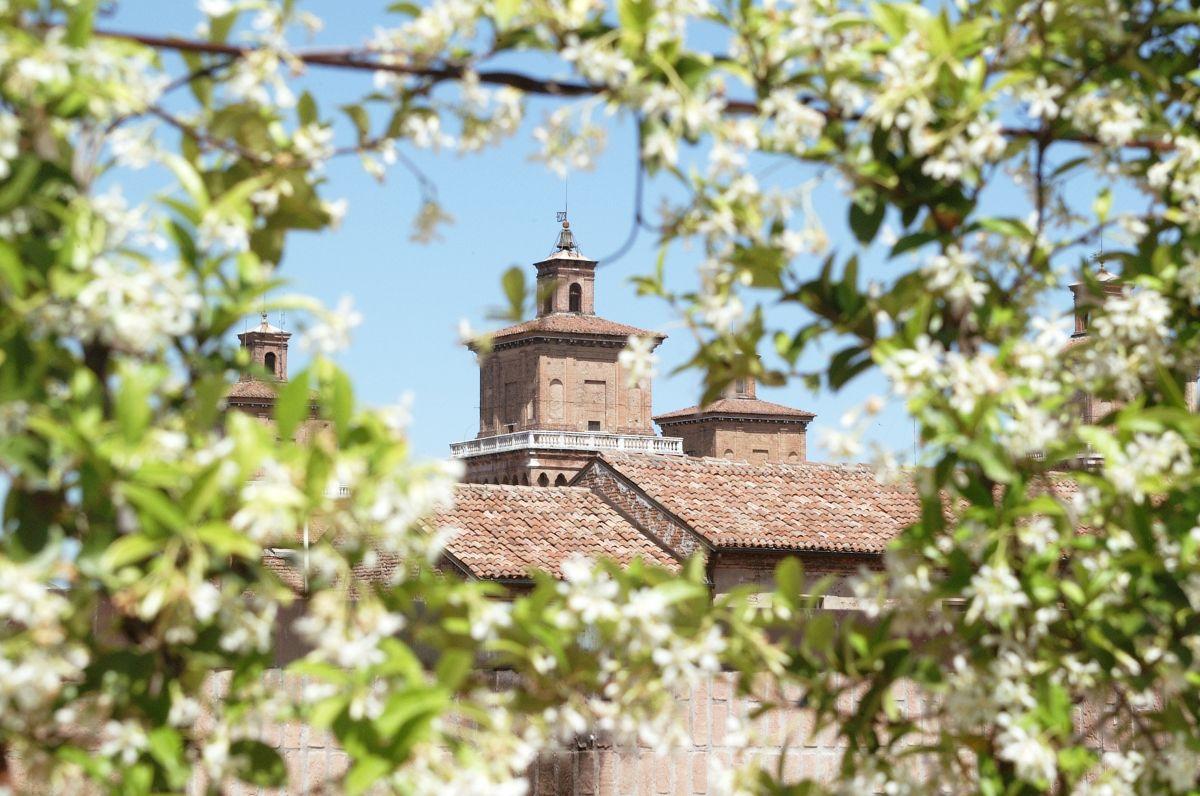 castello_tra-_fiori