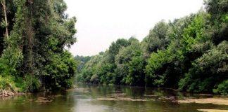 storia e storie dal fiume Reno