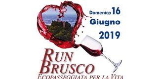 "db21d6851e Quattro Castella, ""RunBrusco"": una passeggiata di solidarietà"
