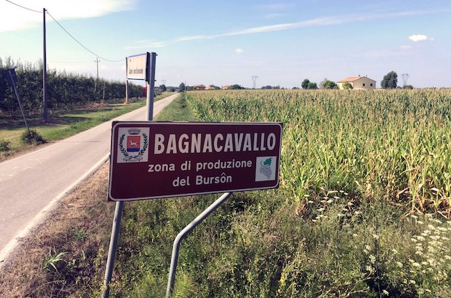 bagnocavallo